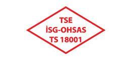 TSE 18001